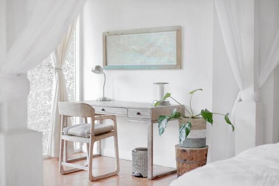 Room in one color with Plant and Raw Wood desk